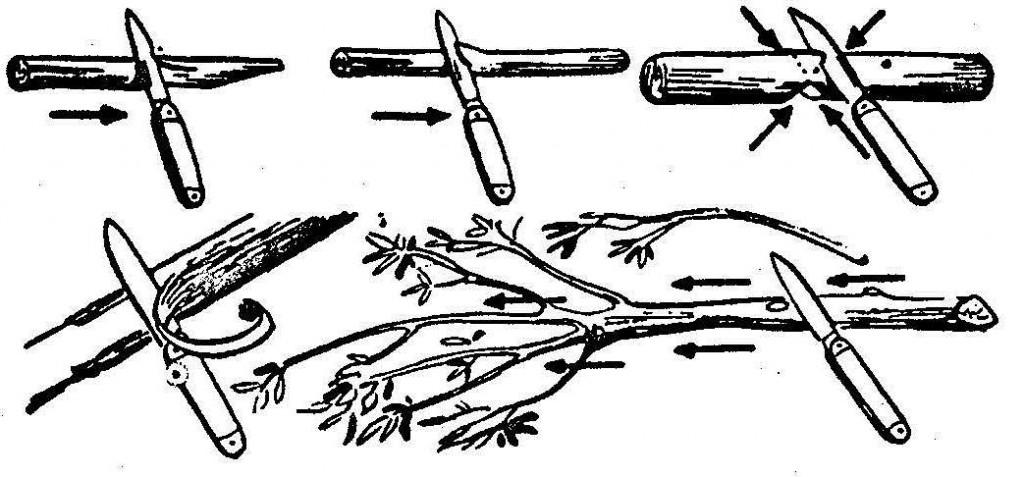 Правила користування ножем