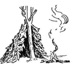 Паль, вложений у розгалуження дерева, може бути основою для твоєї хижі