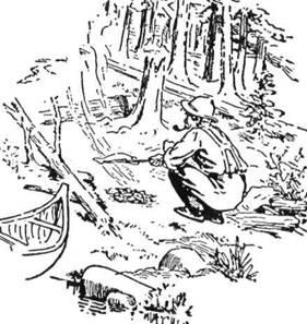 Вишколений лісовик знає життя в лісах. Він знає тисячі різних способів, щоб вигідно влаштуватись