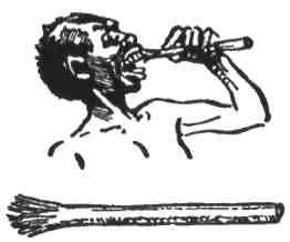 Бушмен робить собі просту щіточку для зубів, дрібно розколовши на одному кінці суху тріску коло шість цалів завдовжки