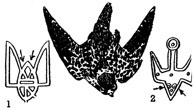 Стрілки, спрямовані до зразка тризуба св. Володимира Великого (1), що подібний до сокола в льоті, баченого із низу, вказують на «ніжки» сокола, сховані у пірю тулуба. — Стрілки біля зразка тризуба Ярослава Мудрого (2), що подібний до сокола в льоті, баченого згори, вказують на «очі» цього сокола.